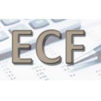 ECF precisa ser entregue até quarta-feira